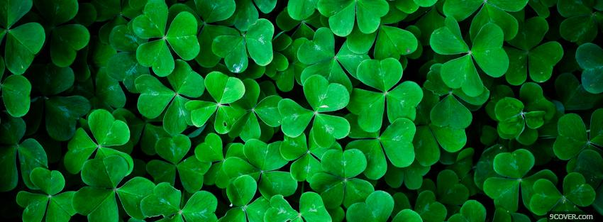 Photo abstract clovers Facebook Cover for Free