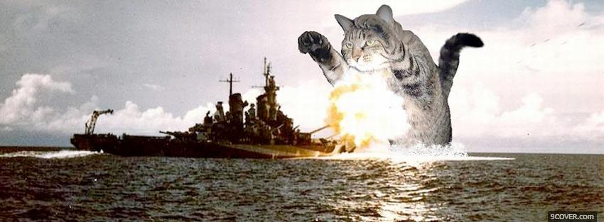 Photo cat destroying ship Facebook Cover for Free