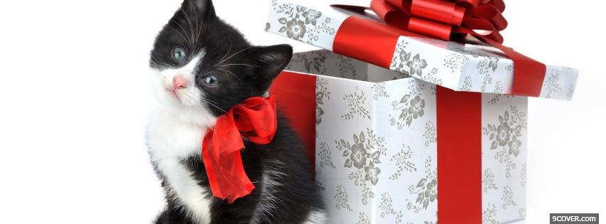 black kitty next to gift facebook cover