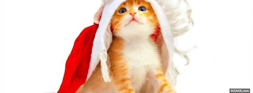 Photo precious kitten with hat Facebook Cover for Free