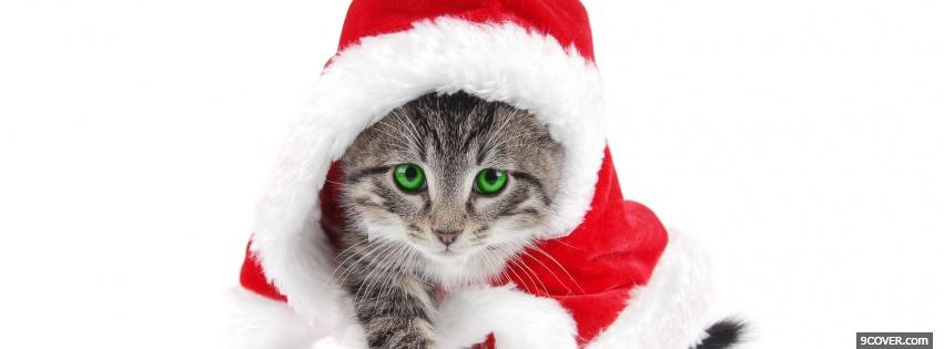 Photo green eyes kitten with christmas hat Facebook Cover for Free