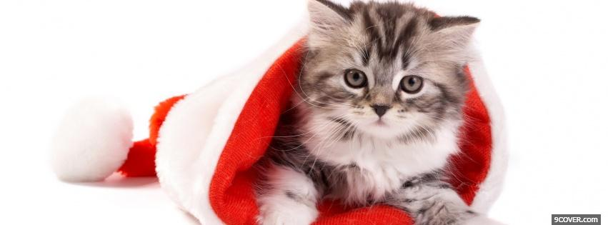 Photo grey kitten in christmas hat Facebook Cover for Free