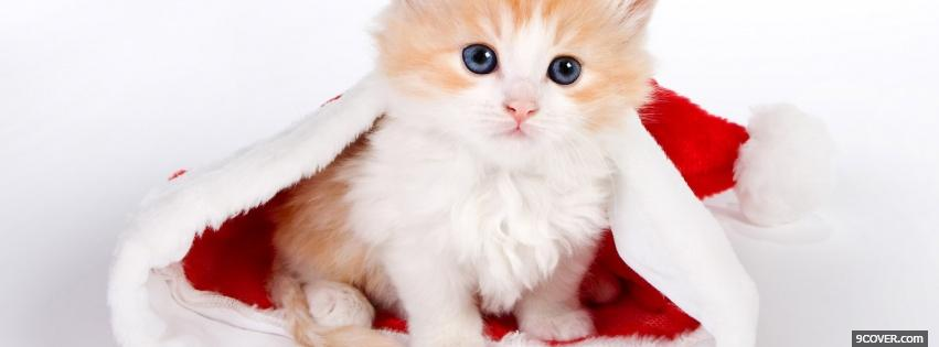 Photo baby cat in christmas hat Facebook Cover for Free
