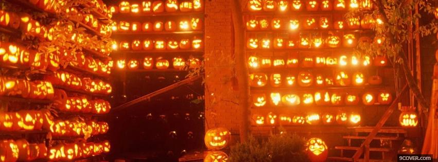 Photo various beautiful pumpkins Facebook Cover for Free