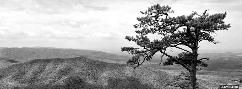 Photo black and white scenery Facebook Cover for Free