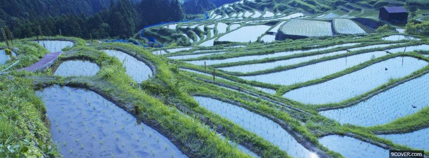 Photo japan rural nature Facebook Cover for Free
