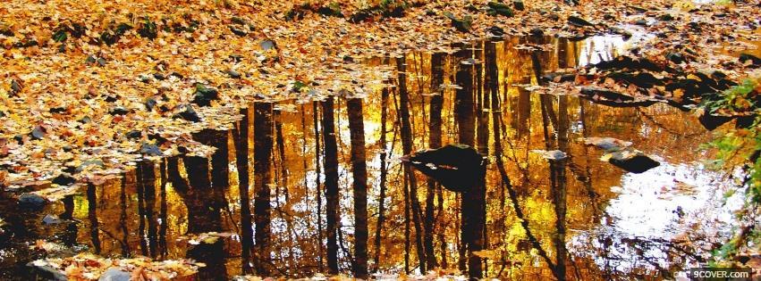 autumn leaves and rain Photo Facebook