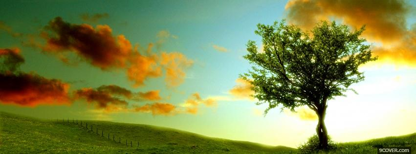 Photo nature tree and clouds Facebook Cover for Free