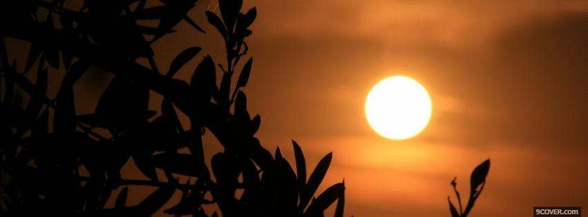 Photo sun nature Facebook Cover for Free