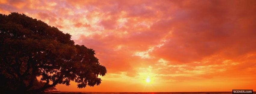 Photo african sunset nature Facebook Cover for Free
