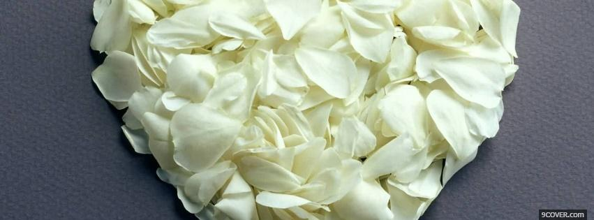 Photo white petals nature Facebook Cover for Free