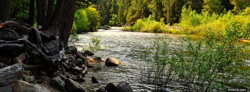 Photo river plants nature Facebook Cover for Free