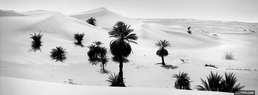 Photo black and white desert Facebook Cover for Free
