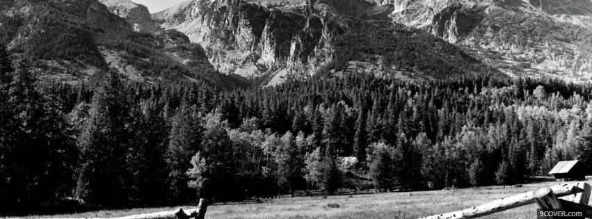 Photo forest black and white Facebook Cover for Free