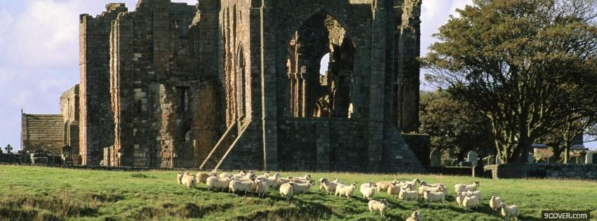 Photo old castle and animals Facebook Cover for Free