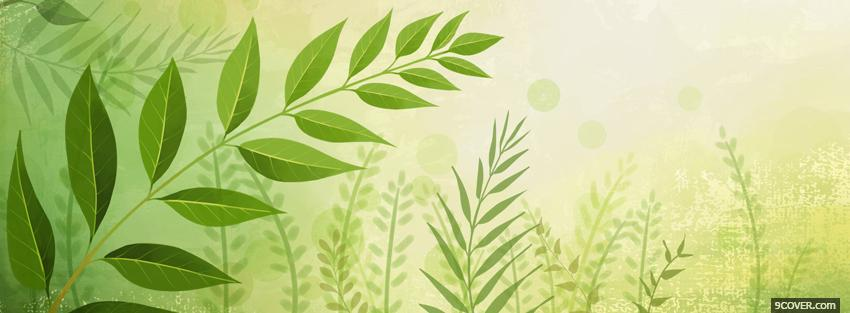 Photo green plants creative Facebook Cover for Free