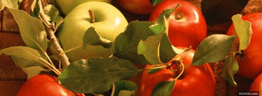 Photo red and green apples Facebook Cover for Free