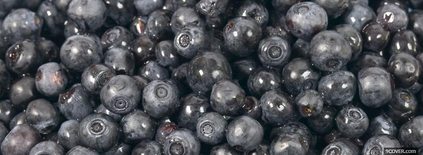 Photo blueberries food Facebook Cover for Free