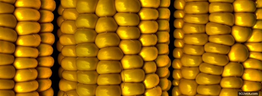 Photo yellow corn close up Facebook Cover for Free