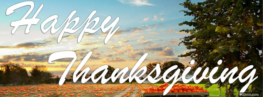 Photo pumpkins thanksgiving holiday Facebook Cover for Free