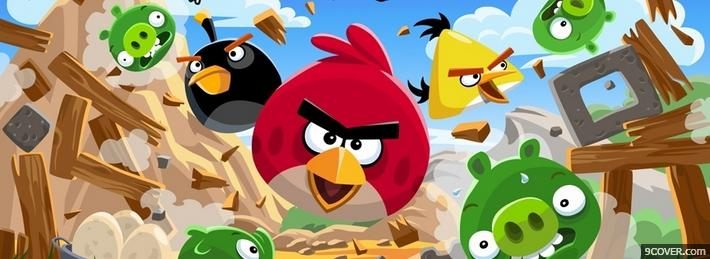 Photo Angry Birds Facebook Cover for Free