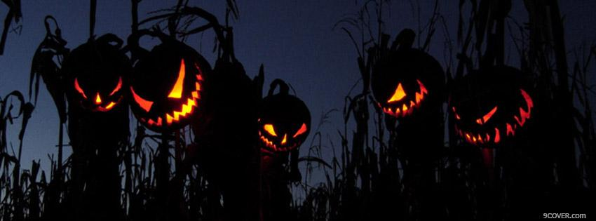 Photo Halloween Pumpkins Facebook Cover for Free