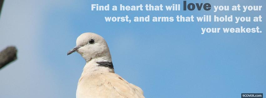 Photo Find A Heart That Will Love Facebook Cover for Free