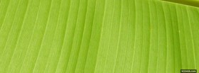free lime green abstract line facebook cover