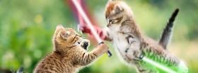 star wars cats animals facebook cover