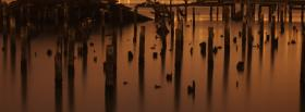free nature water reflection facebook cover