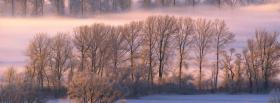 free scenery of trees and snow facebook cover