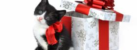 free black kitty next to gift facebook cover
