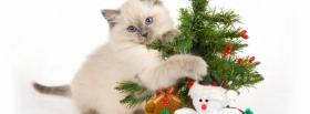 free kitten playing with christmas ornaments facebook cover