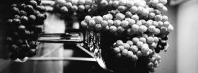 black and white grapes facebook cover