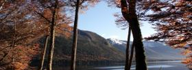free fall trees mountains facebook cover