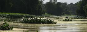 free lake flowers nature facebook cover