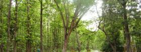 free dense woods nature facebook cover