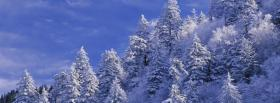 free morning in winter nature facebook cover