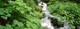 free leaves and waterfall nature facebook cover