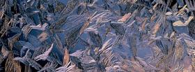 free morning frost nature facebook cover