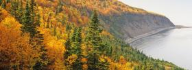 free autumn forest trees nature facebook cover