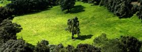 free green forest nature facebook cover