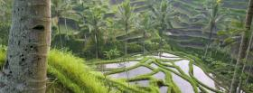 free bali rice fields nature facebook cover