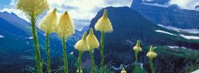 free glacier national park nature facebook cover