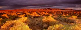 free antelope valley nature facebook cover