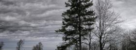 free gloomy day nature facebook cover