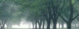 free morning mist nature facebook cover