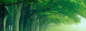 free forest sunrise nature facebook cover