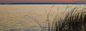 free grass in water nature facebook cover