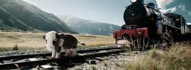 free cow and train nature facebook cover